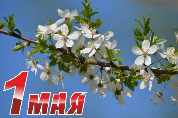 День весны и труда!